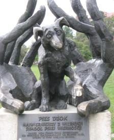 Najwierniejszy z wiernych. Symbol psiej wierności.